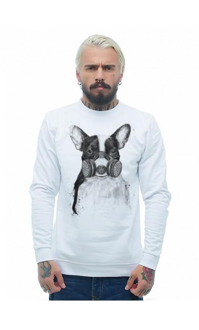 Мужская свитшоты Собака в респираторе