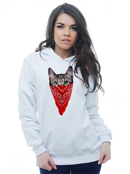 Кот в платке